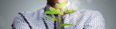 השקעה במניית טבע לפי שיטת לימודי שוק ההון
